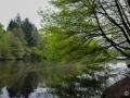 Bensberger See
