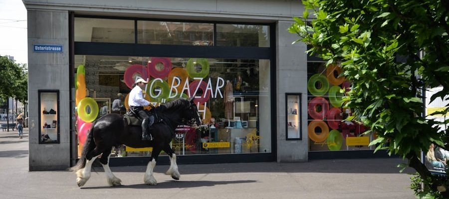 Mini-Abenteuer Zürich Pferd