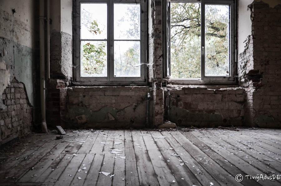 Ruine MeckPomm Fenster